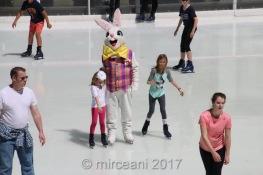 2017_04_16_53861